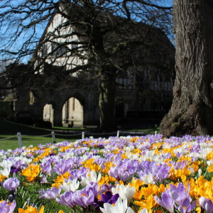 Hospitium in spring by Mike Linstead