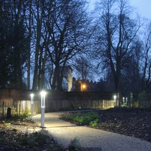 The Edible Wood pictured at dusk lit by electric lanterns